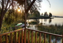 The Wattled Crane is one of the five critically endangered bird species in South Africa