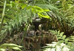 Crane's Nest Guest House @ 313
