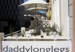 Daddy Long Legs Art Hotel