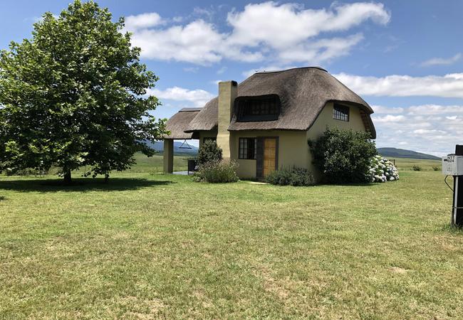 Dashy Cottage
