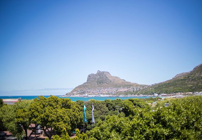 Hout Bay Harbour View