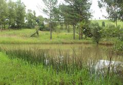 Summer dam
