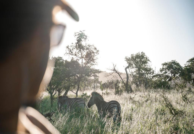 Game Drives