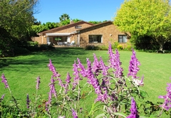 Self Catering in Constantia