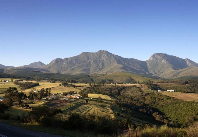 Ruiterbos Valley