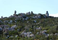 Fynbos hike