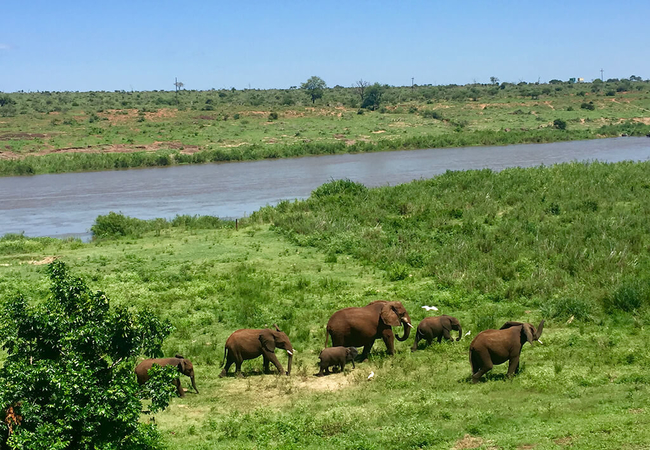 Elephant Walk Retreat