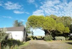 Farmhouse African Room