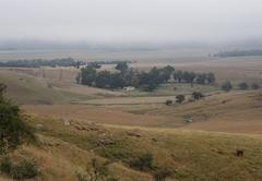 Fairbairn Guest Farm