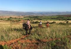Horse rideing