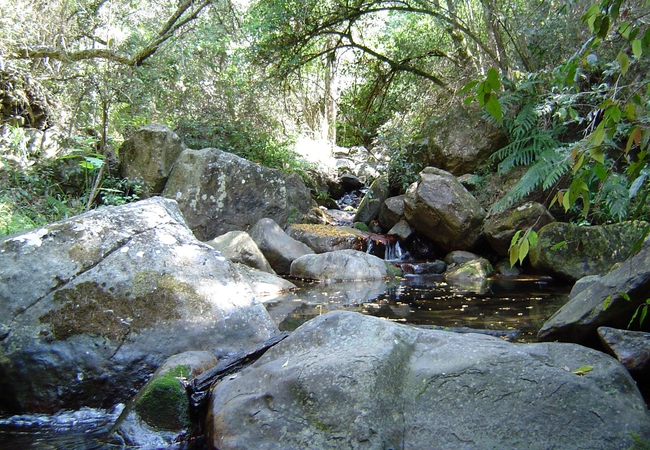 Our stream - hiking