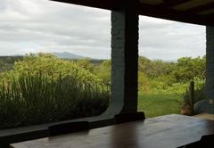 Forest View verandah