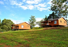 Forest View Cabins