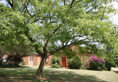 Fourways Gardens Guest Estate