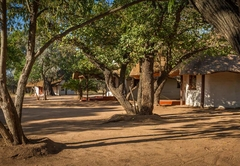 Franks Bush Camp
