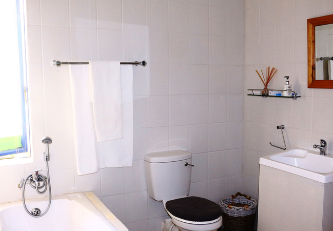 2B 2 Bedroom apartment – bathroom and shower