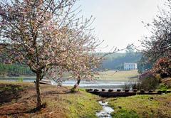 Glenogle Farm
