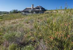 Fynbos villa