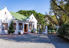 Green Olive Guesthouse