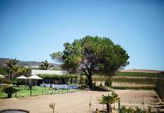 Groenvlei Guest Farm