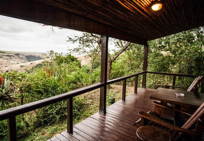 Serengeti Suite