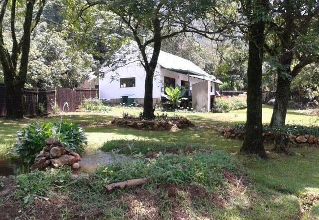 Herb Cottage, garden