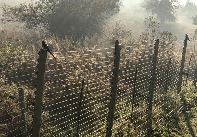 Fish Eagle Lodge kitchen