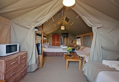 Spotted Dikkop Luxury Tent