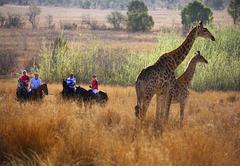 Colin's Horseback Africa
