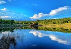 Idwala View Nature