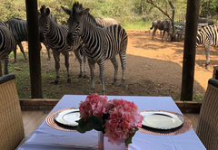 Imbube Safari Lodge