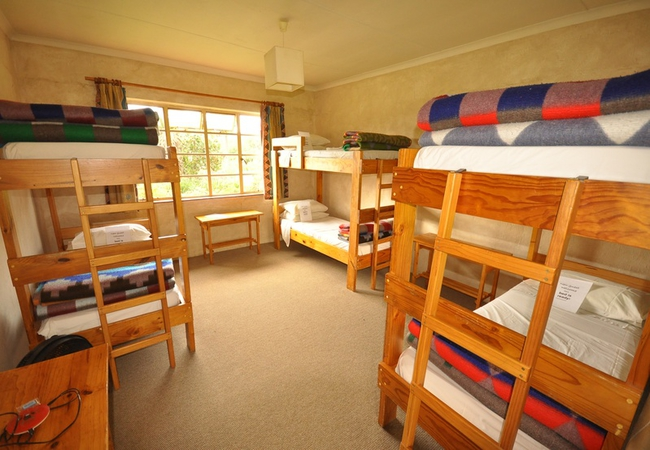 6 Bed Dorm Male