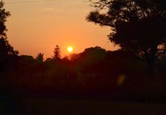 Bosveld Cottage