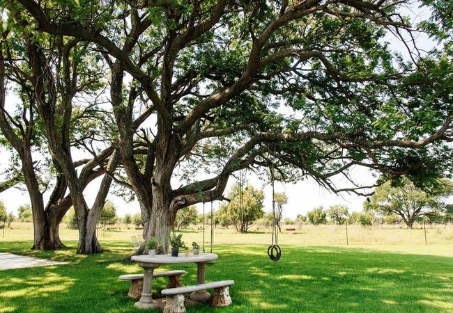 Jahensu High Tree Lodge