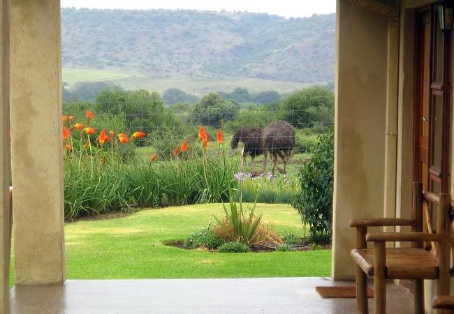 JAK Strydom Nature Reserve
