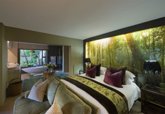 Executive Lagoon Facing Suite - Forest Suite