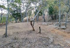 Karee Krans Nature Farm