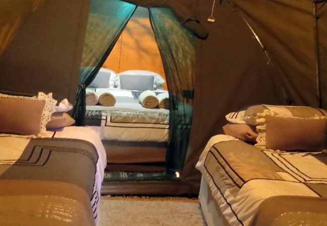 Tent - beds