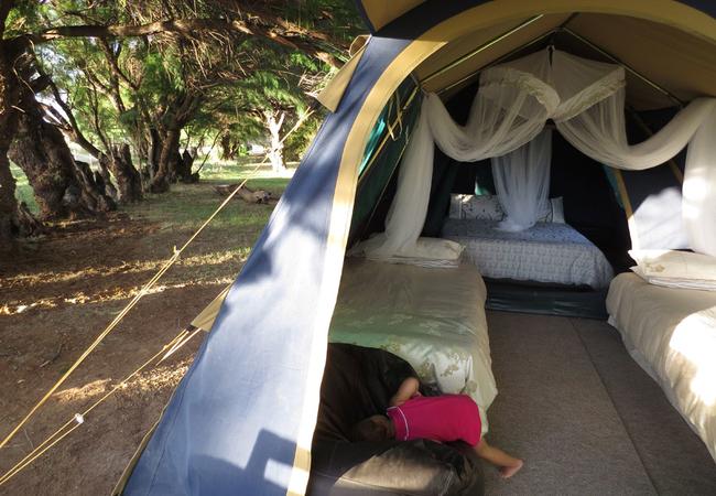 Full tent view
