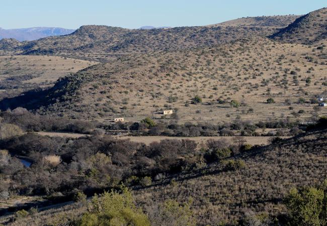 Bush Cottages