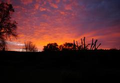 Karoo Countryside