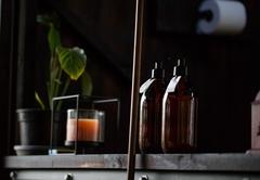 Kestrel Yurt Camp