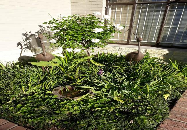 Kihara Guesthouse