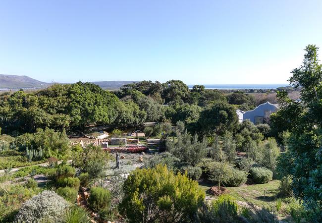 Kinghorn\'s Garden