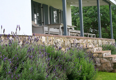 Kleinbergskloof Olive Estate