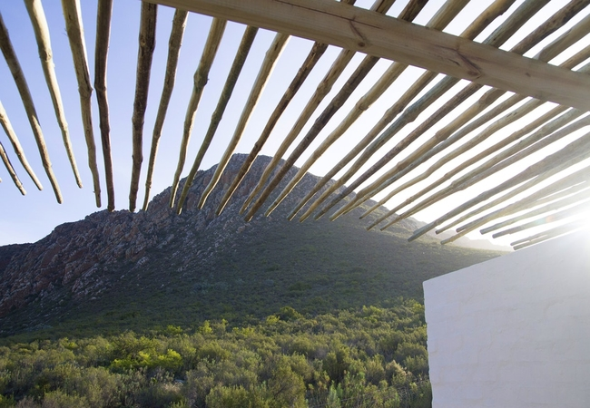 Kapokbos - Double Room On Nature Reserve