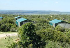 Kudu Ridge Game Ranch