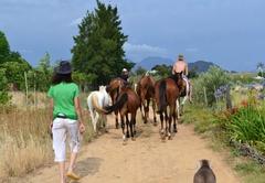 Horse riding at Kuruma Farm Cottages