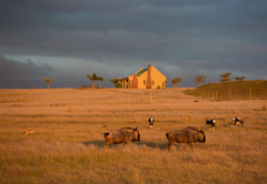 Kwetu Guest Farm