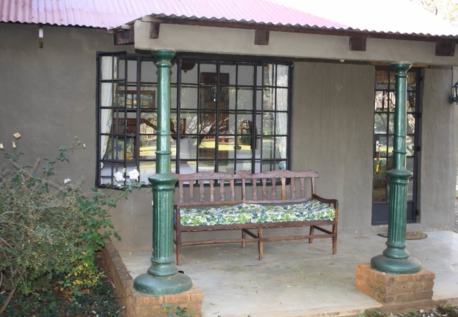 Olive Tree patio
